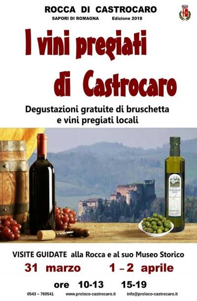I vini pregiati di Castrocaro